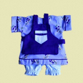 Dress Apron and Bloomers
